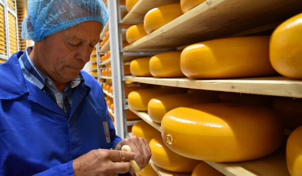 De rijping van de kaas bij Royal A-ware wordt beoordeeld door een via het NetDimensions LMS opgeleidde medewerker.